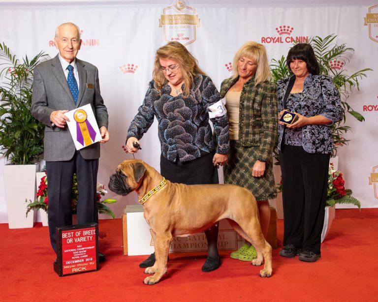 Ana Royal Canin Win